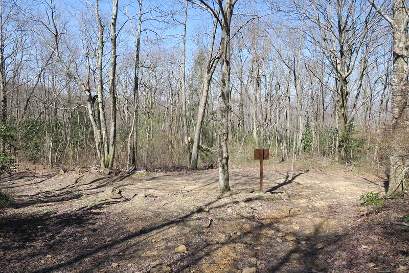 Ridge Trail-Ewing Trail Junction - 3,340'