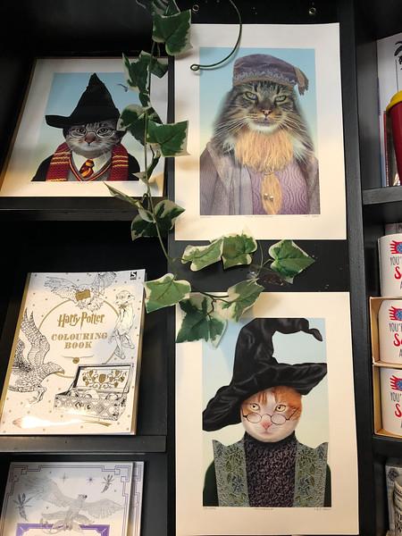 Harry Potter art in Edinburgh