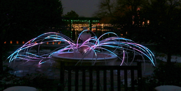 The Illuminations at Botanica