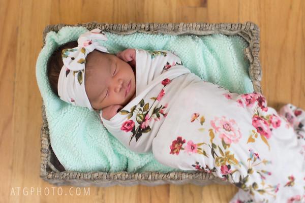 Jayli - Newborn