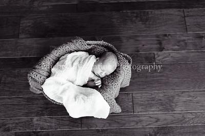 Baby Z   Newborn, exp. 11/05