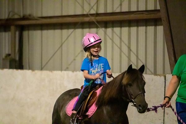 2020-08-30 Cousins horses