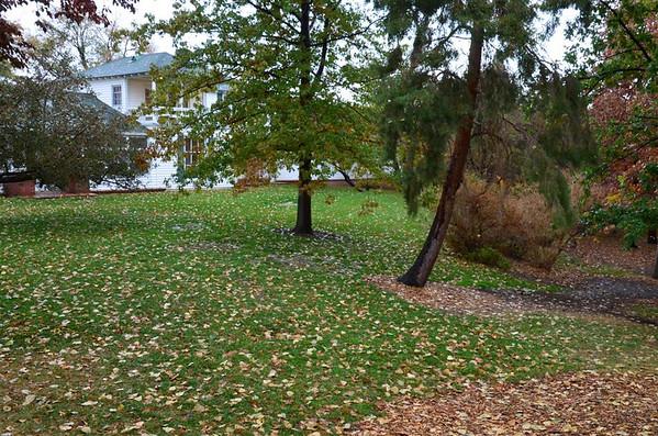 Rancho San Rafael - November 17, 2012 - Rainy day