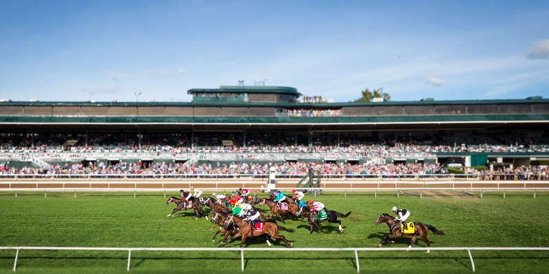 """Airoforce (Colonel John) wins the Dixianan Bourbon (G3) a """"Win and you're in"""" Breeders' Cup race at Keeneland on 10.4.2015. Julien Leparoux up, Mark Casse trainer, John Oxley owner."""