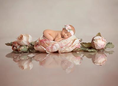 Hartlyn • Newborn