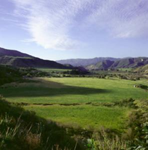 LAKE PIRU FARM