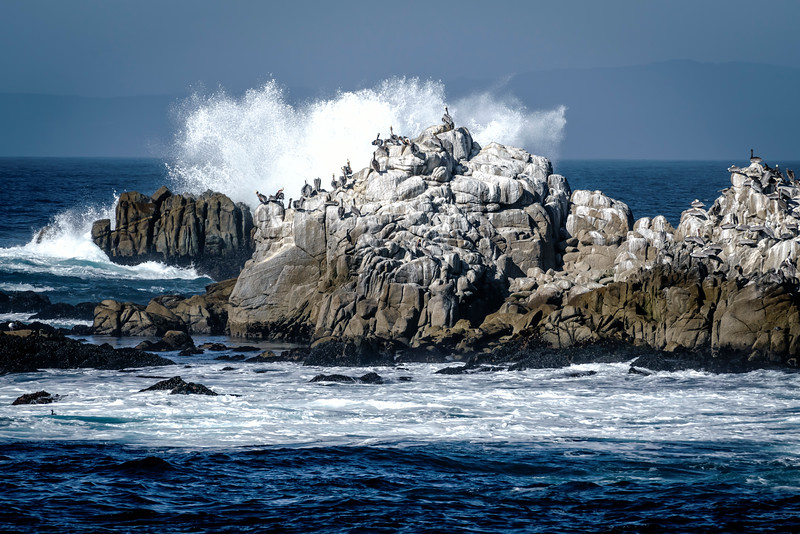 Pacific Grove Coast at Asilomar (1 of 1).jpg