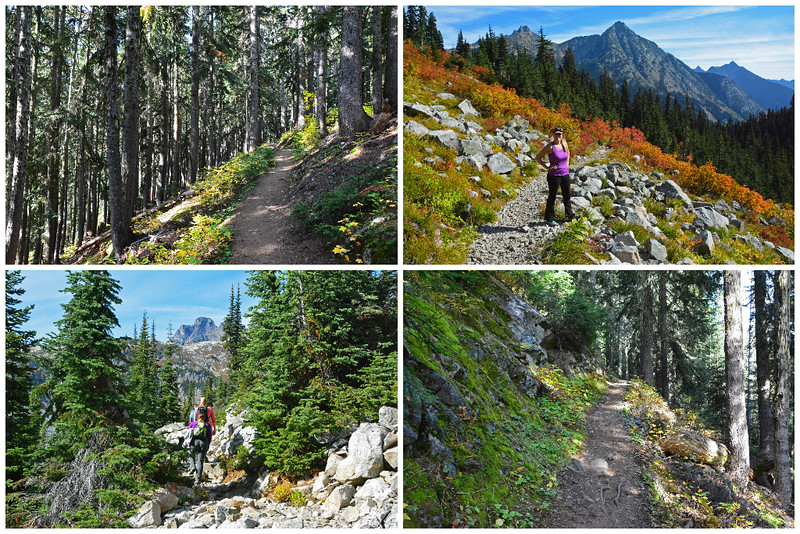 Heather Maple Pass Loop