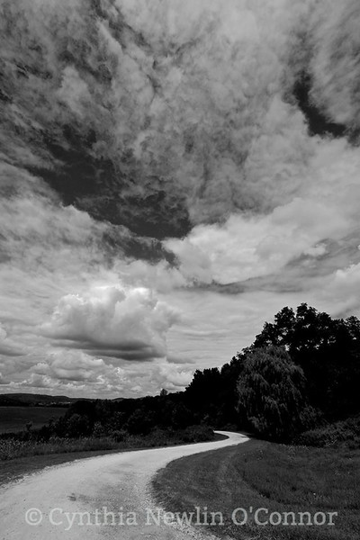 upland pastures B&W.jpg