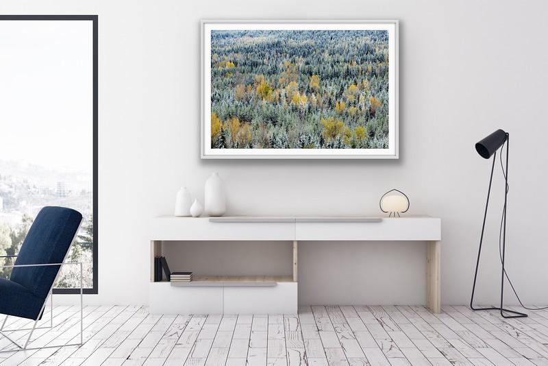 'Autumn Snowfall' Fine Art Framed Print