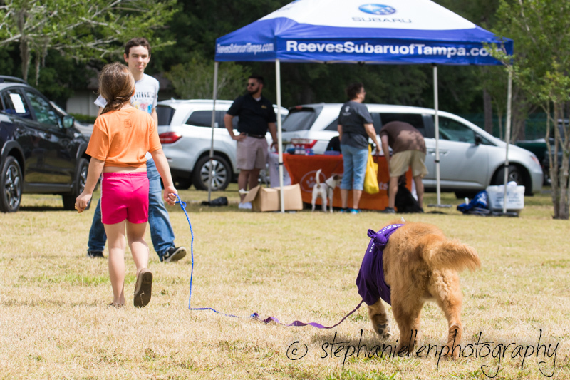 Woofstock_carrollwood_tampa_2018_stephaniellen_photography_MG_8505.jpg