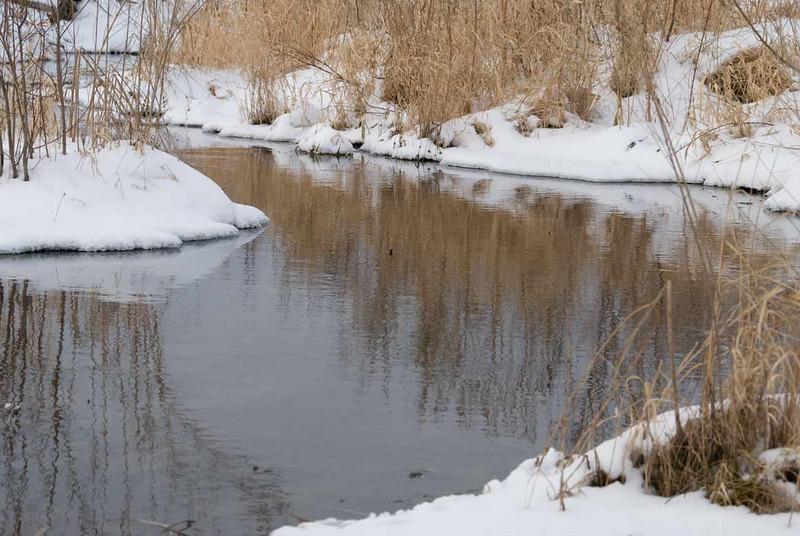 winter-creek.jpg