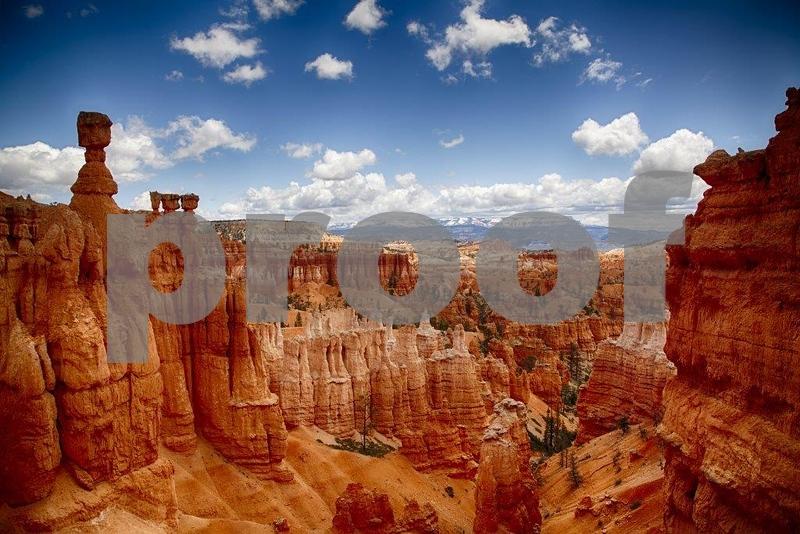 Navajo Trail 8011_HDR (2).jpg