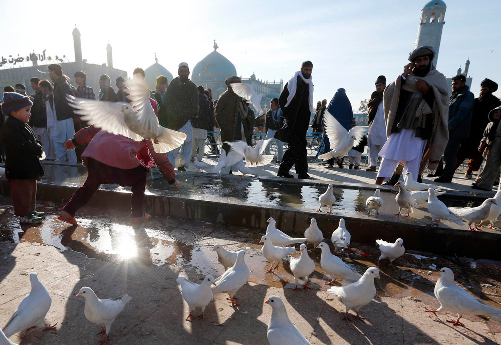 Description of . People stroll as pigeons fly outside the Hazrat Ali, or Blue Mosque in Mazar-e-Sharif, northern Afghanistan December 21, 2012.  REUTERS/Fabrizio Bensch