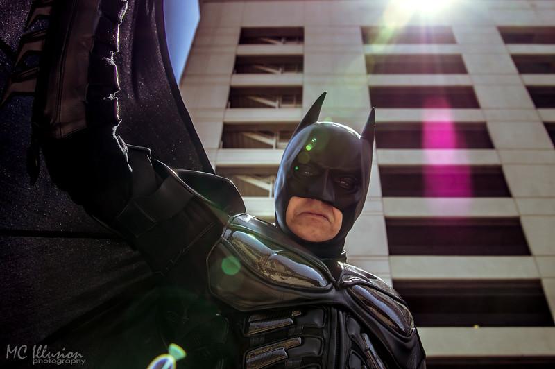 Ivy Tom Catwoman Batman_0063a1.jpg