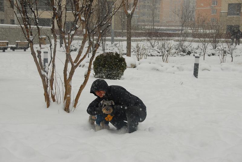 [20100103] 1st 2010 Snow in Beijing (47).JPG