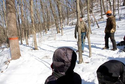 Logging Field Trip