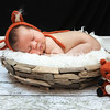 Colin's Newborn Photos_262