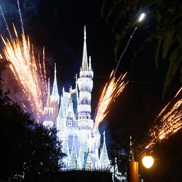 2015 magic kingdom (36)-full.jpg