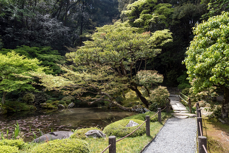 Garden of Nanzen-in Buddhist temple at Nanzen-ji complex in Kyoto, Japan