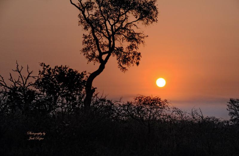DSC_4237 sunset best 2  .jpg