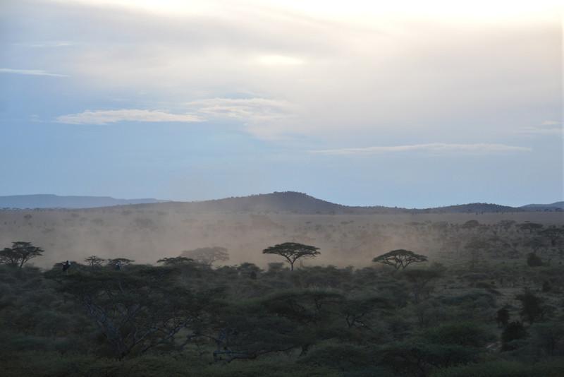 East Africa Safari 303.jpg