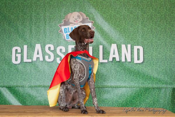 Glassell Bark