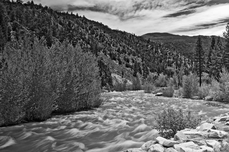 South of Minden Nevada USA 2010