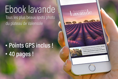 Ebook - Tous les Spots Photo de la Lavande