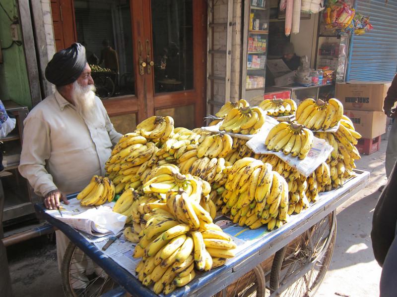 India 2009-007.jpg