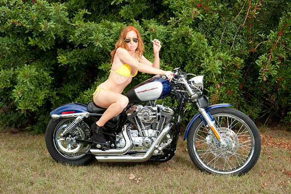 Molly's Motorcycle Gallery