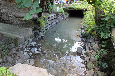 Wabash, Sewer, Wildcats, behind Library, Tamaqua (6-29-2011)