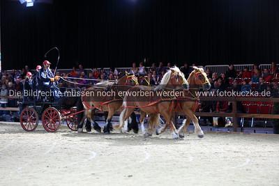 12.10.2012 Hund und Pferd in Dortmund