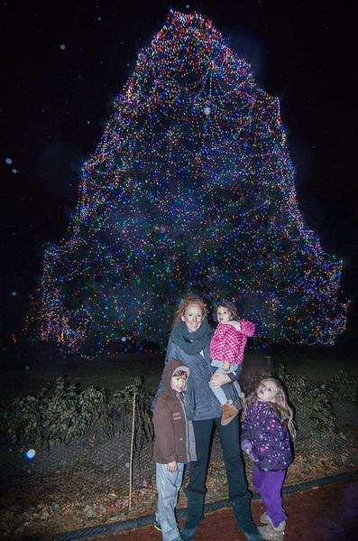 Toledo Zoo Light Show - 2014 - _CAI4525.jpg