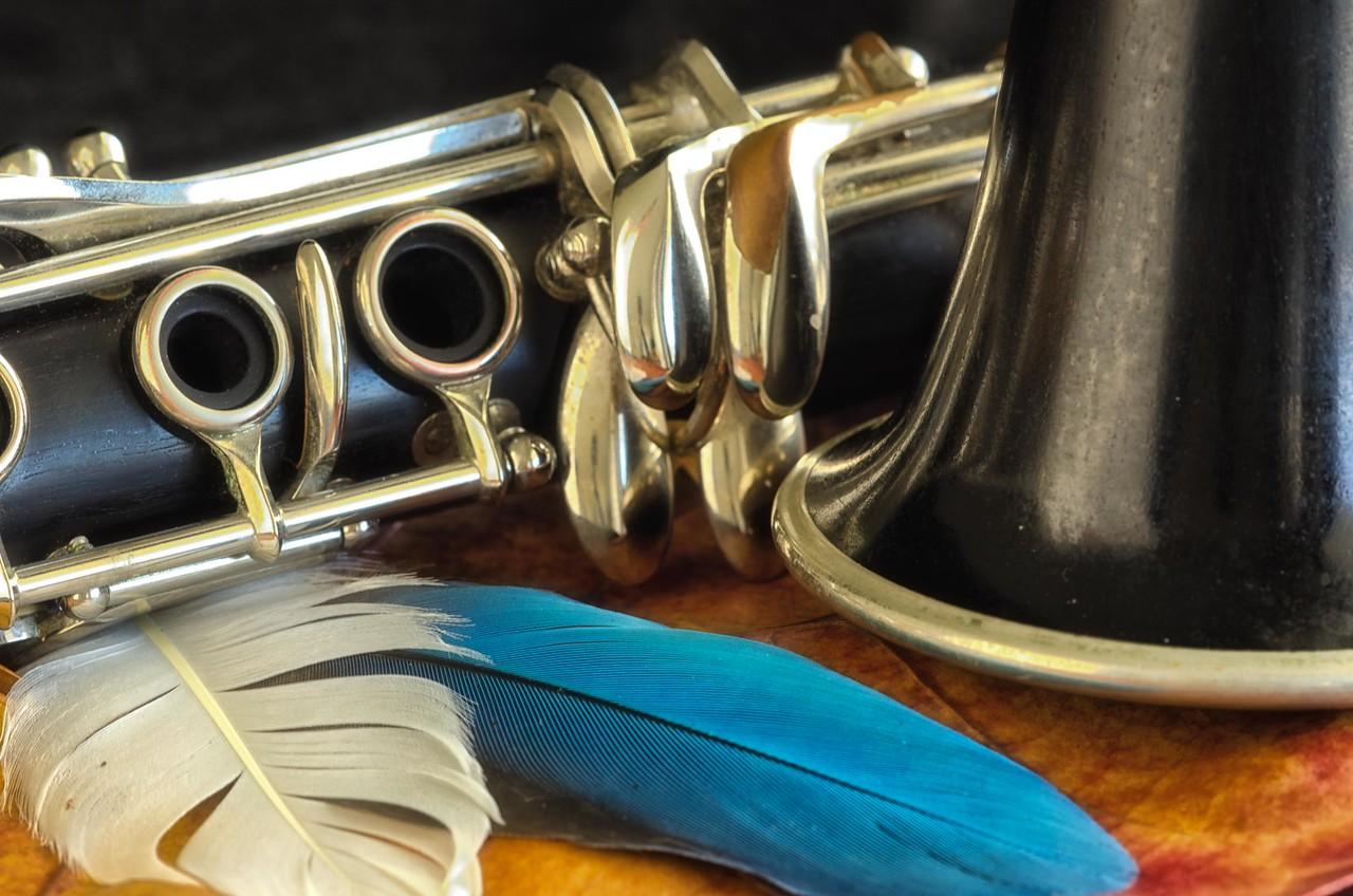 0023 - Clarinet pictures 3-25-13-1042-Edit