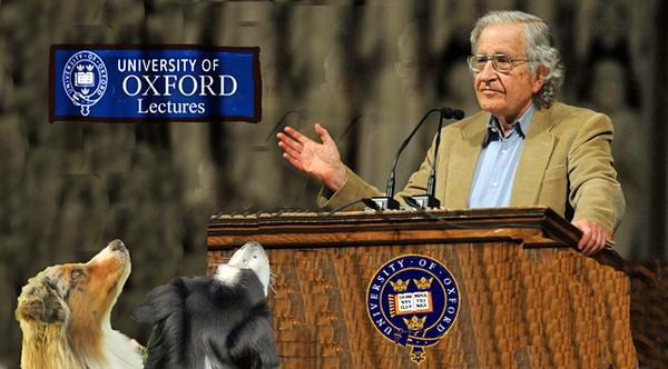 Chomsky.GaWy_650x360_edited-1.jpg
