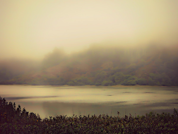 Poetic Land - Scapes