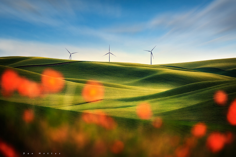 4548 Three Wind Turbins Dan Mottaz Print.jpg