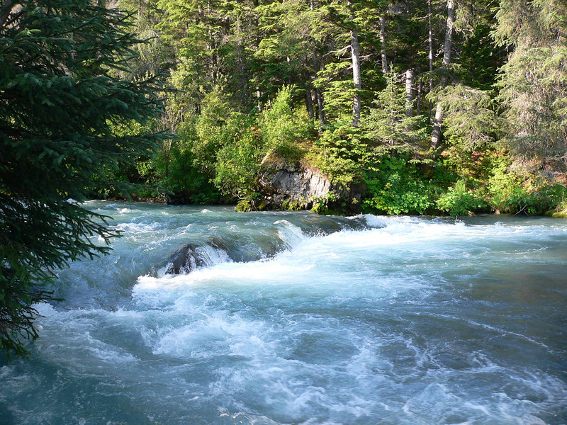 Ptarmigan Creek