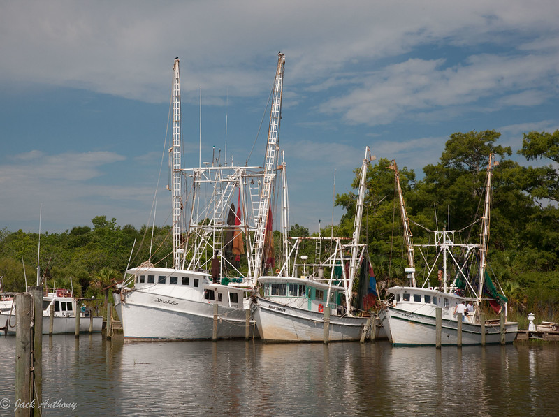 Shrimp Boats, Apalachicola, Florida