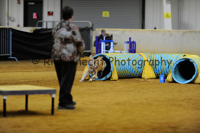 """Sunday Excellent Standard 20"""" Group 1"""