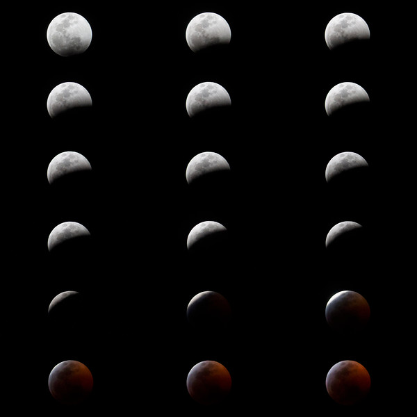eclipse-collage.jpg