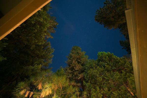 Pollock Pines 2014
