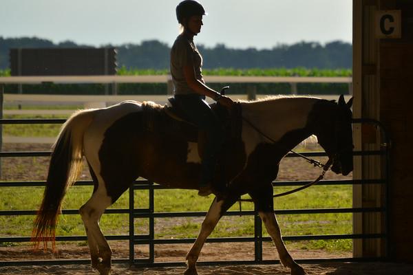 Wednesday's Equestrian Album