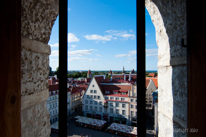 tallinn-estonia-view-1291.jpg