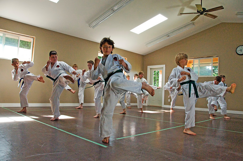 Nic(martial art)20100619A-6930A.jpg