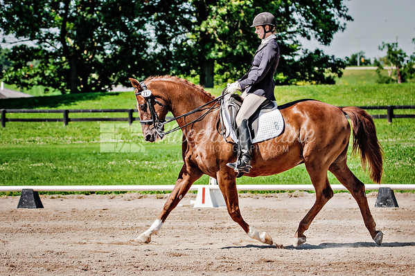 KDA July Dressage Show