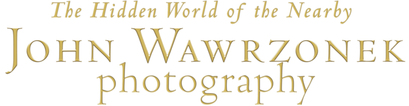JOHN WAWRZONEK GOLD photograph hiddene world logo.png