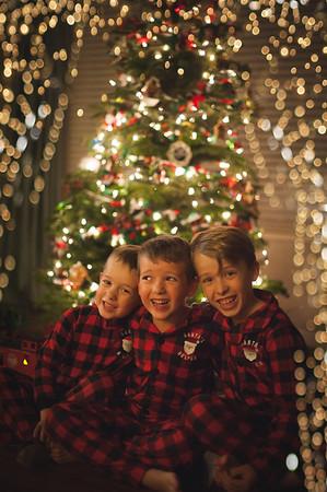 Fortin Christmas Mini || 2018