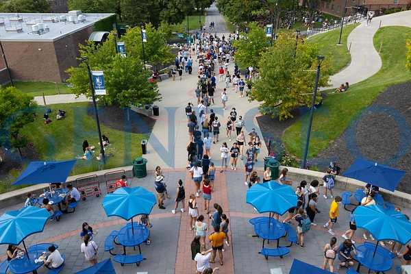 New Student Picnic, Convocation and First Knight